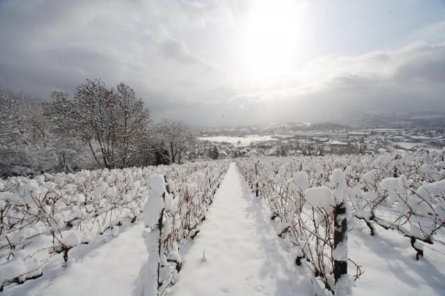 Château de Monterminod en repos hivernal