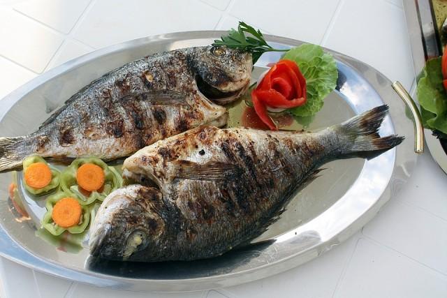 fish-2073798-960-720-338