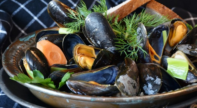 mussels-3148452-960-720-335