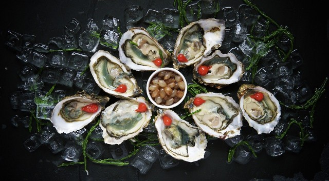 oysters-1209767-1280-360