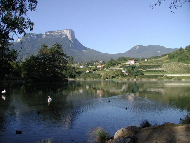 Vignoble des Abymes autour du Lac Saint André
