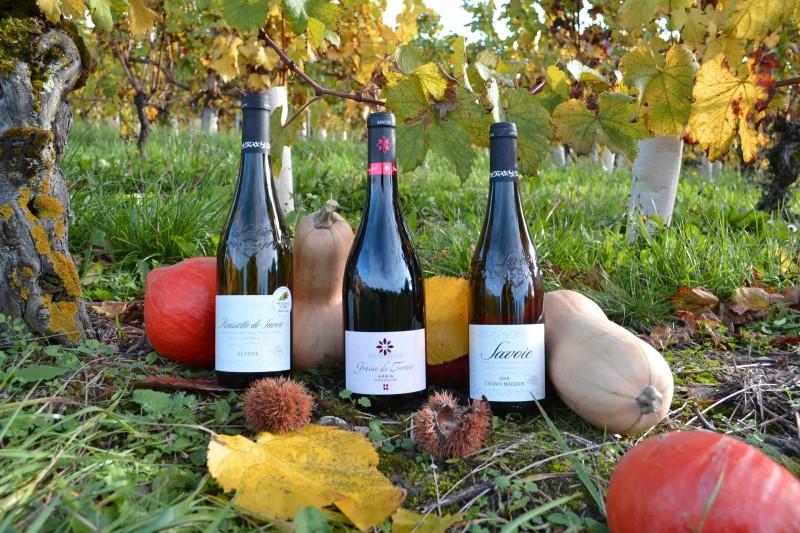 Vins de Savoie pour l'automne