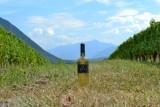 pure-chardonnay-vignes-680