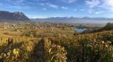 Vignoble Abymes Cremant de Savoie