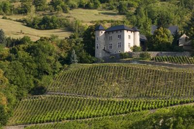 Château de Monterminod